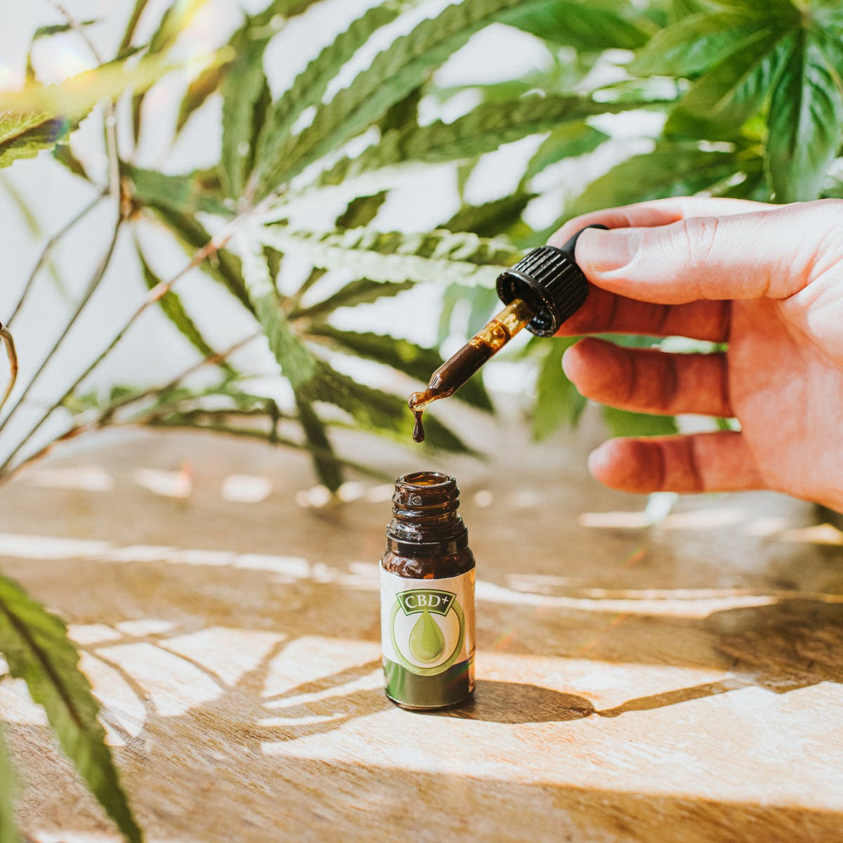 Legality of CBD in USA